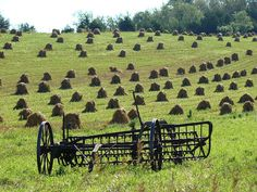 Amish field harvested and drying byJonathan Doern #wisconsin