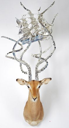 branded taxidermy by peter gronquist | TheCoolCollector
