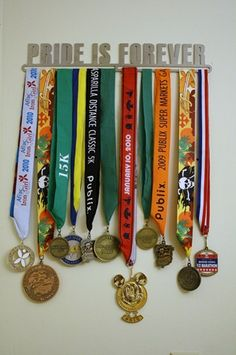 medal display for H's honors: ICE Pride?