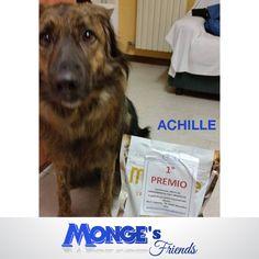 Achille #Mongesfriends