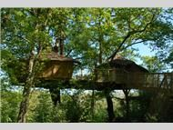 Les Alicourts Resort Treehouses. Cool & Weird Hotels. #Cool #hotels #Weird #Hotels #interesting #hotels #cool architecture #places #weird #architecture #places #interesting #architecture #places #travel