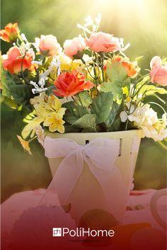 Μεταμορφώστε το βάζο σας μέσα σε 5 λεπτά! Tips, Plants, Flora, Plant, Planting