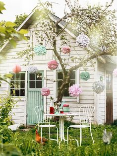Summer refreshments under the apple tree