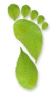 Semana verde ESPECIAL medio ambiente