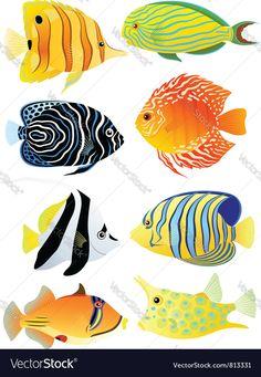 Collection of tropical fish vector image on VectorStock Tropical Fish Aquarium, Tropical Fish Tanks, Fish Ocean, Koi Fish Drawing, Fish Drawings, Tropical Fish Pictures, Drawn Fish, Underwater Art, Fish Wallpaper