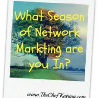 3 Seasons of Network Marketing. Where are you? | Chef Katrina