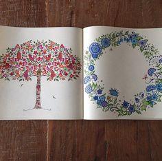O livro colorido por alguém