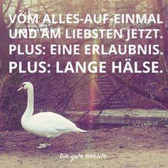 Diesen Brief gleich online lesen: http://www.diegutewebsite.de/facebook-twitter-und-co-ignorieren.html