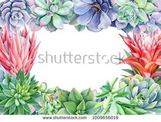 Стоковая иллюстрация «Frame Multicolored Succulents On Isolated White Free Prints, Green Plants, Watercolor Paintings, Watercolors, Planting Flowers, Frame, Illustration, Nature, Cards
