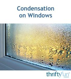 """""""Moist air in a home can cause condensation to form on the inside surface of windows when the air is colder outside than in. A dehumidifier can help reduce the excess moisture and reduce or eliminate the problem. Window Condensation, Window Protection, Dehumidifiers, Moisturizer, Surface, Windows, Tips, Moisturiser, Advice"""