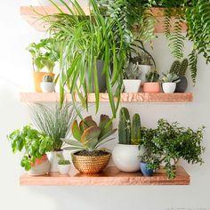 DIY Copper Shelves