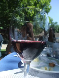 Wine tasting in Connecticut. Click through to see more http://www.traveling-cats.com