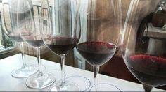 Cata de vinos en la Unión Española de Catadores. Curso Periodismo Gastronómico y Nutricional UCM, Imagen Nuria Blanco @nuriblan, @UCMgastro.  29.03.2014