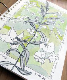 Jane LaFazio sketchbook, I like that she date stamped it.