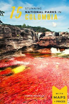 A selection of Colombia National parks that you shouldn't miss. From the Amazon to Caribbean beaches, through canyons, mountains & this beautiful river, here are the 15 best national parks to visit in Colombia. Our favourite outdoor destinations for national parks lovers. Includes pros & cons, map, prices. #colombia #nationalparks #nature South America Destinations, South America Travel, Travel Destinations, Columbia Travel, Travel Guides, Travel Tips, Argentina Travel, Adventure Travel, Travel Inspiration