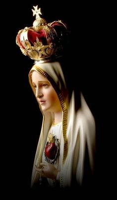 Immaculate Heart of Mary, keep me in your most pure heart, so that I may please Jesus through you, in you, and with you