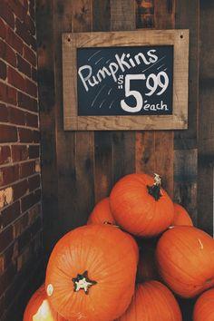 pumpkins $5.99 each