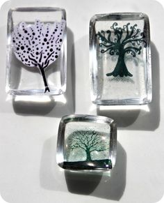 Trees embedded in resin by Busy Squirrel