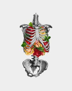 Skeleton torso filled with roses