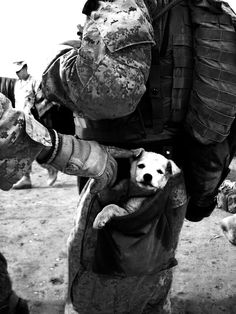 Soldier and stray puppy