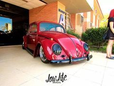Cool Red bug