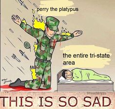 I feel like this was meant to be something really deep and meaningful about the army protecting us but oh well good job perry the platypus