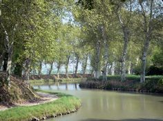 Canal du Midi: Canal lined with trees, towpath - France-Voyage.com