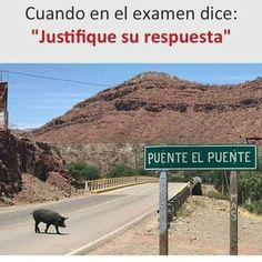 "A bridge named ""El Puente"" Funny Spanish Memes, Spanish Humor, Funny Relatable Memes, Funny Photos, Funny Images, Comedy Central, Foto Bts, Haha Funny, Hilarious"