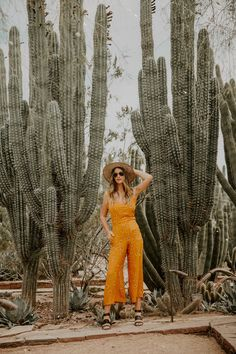 Dash of Darling Desert Botanical Garden, Botanical Gardens, Starting A Vegetable Garden, Vegetable Gardening, Small Garden Plans, Bohemian Look, Boho Chic, Desert Fashion, Arizona Travel