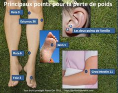 Points pour perdre du poids Health And Nutrition, Health Tips, Love My Body, Qigong, Yoga, Chinese Medicine, Green Life, Loose Weight, Massage Therapy