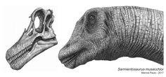 Sarmientosaurus musacchioi