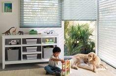 Discover Danmer, California's premier provider of custom window treatments & quality window coverings including shutters, blinds, and shades for over 30 years. Love Your Pet Day, Sheer Shades, Hunter Douglas, Custom Window Treatments, Living Room Windows, Blinds For Windows, Window Blinds, Window Styles, Pet Safe