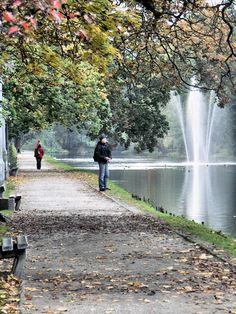 Autumn, Bydgoszcz Old Canal, Bydgoszcz, Poland