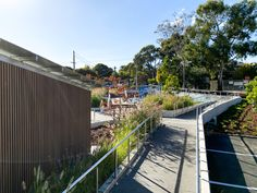 Balwyn Community Centre Commercial Landscaping project. Landscaped Gardens on either side of an exposed aggregate pathway with stainless steel handrails. The blue in the distance is the outdoor exercise equipment. Concrete Pathway, Exposed Aggregate Concrete, Outdoor Fitness Equipment, Exercise Equipment, Stainless Steel Handrail, Commercial Landscaping, Outdoor Workouts, Pathways, Garden Landscaping