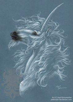 Illuminated by pallanoph on DeviantArt Unicorn Fantasy Myth Mythical Mystical Legend Licorne Enchantment Einhorn unicorno unicornio Единорог jednorožec Eenhoorn yksisarvinen jednorożca unicórnio Egyszarvú Kirin