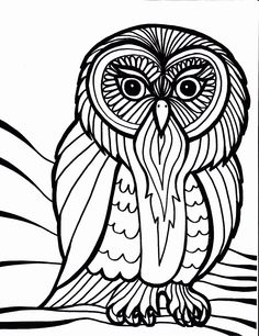 Owl, : owl-outline-art-coloring-page. Owl Coloring Pages, Pattern Coloring Pages, Online Coloring Pages, Coloring Books, Kids Coloring, Printable Coloring, Scary Owl, Scary Birds, Mandalas Painting