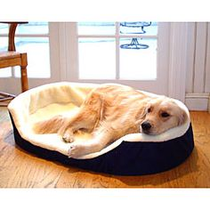 Pet bed for Aussie.