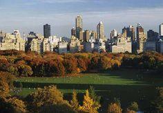 Sheep Meadow, New York, NY