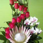 DF#12   $1,725 protea rey con rosas y orquideas