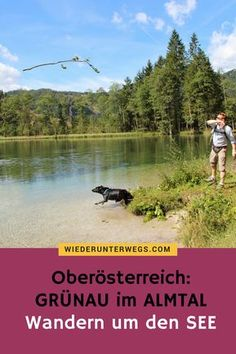 Dog-friendly enjoyment on the Almfluss – Nina Mit Bindestrich – Join the world of pin Heart Of Europe, Image Categories, Dog Friends, Austria, Travel Inspiration, Peking, Woodland, Places To Visit, Adventure