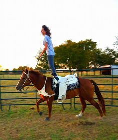 """Lindsay George Byers.. practicing trick """"hippodrome"""". #trickriding #horse #western Pretty Horses, Horse Love, Beautiful Horses, Trick Riding, Amber Marshall, Life Plan, Horse Pictures, Puppys, Horse Stuff"""