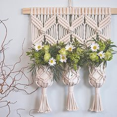 Triple macrame plant hanging by Amy Zwikel Studio. Perfect gift!