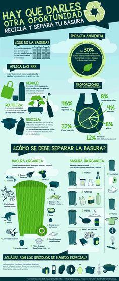Reciclar y separar, infografía.