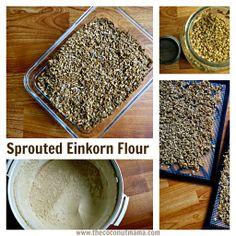 Sprouted Einkorn Flour