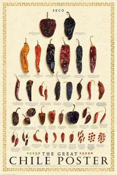 Great Chile Poster (dried) Art by Mark Miller The Great Chile Poster (dried) Art by Elliot Miller at The Great Chile Poster (dried) Art by Elliot Miller at Chile Picante, Roasted Cod, Cooking Tips, Cooking Recipes, Summer Squash Recipes, Dried Peppers, Guacamole Recipe, Mexican Food Recipes, Mexican Cooking