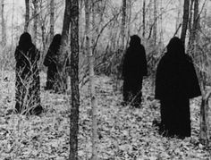 .gathering, woods, coven, witches