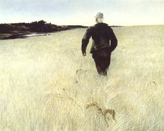 Andrew Wyeth, Turkey Pond