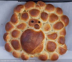 turkey-shaped challah