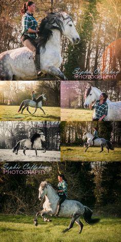 Steve Dent Stunt Team, by Specialist UK Equine Portrait Photographer, Essex I via sophiecallahanblog.com I #equinephotography #photography #equineblogger