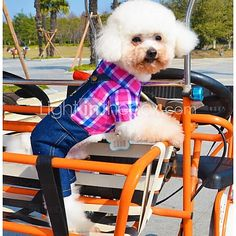 Dog Costume Clothes/Jumpsuit Green Rose Dog Clothes Winter Spring/Fall Jeans Cosplay Casual/Daily 2017 - $10.99
